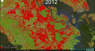 Mapping Deforestation with Google Earth