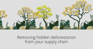 Removing hidden deforestation from your supply chain