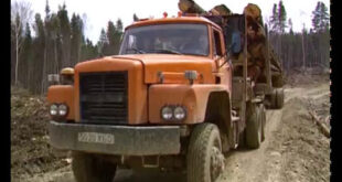 Russian Deforestation: Unsustainable Logging, Soil Erosion, Environmental Destruction