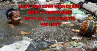 What's happening with all the plastic we use?